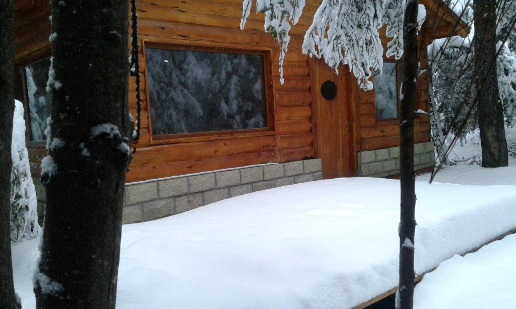 cabana-nevado-2017